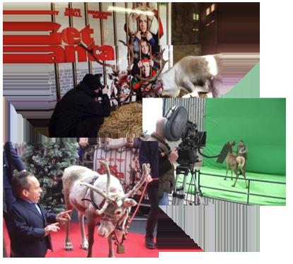 animal enterprises uk